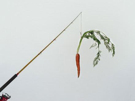 zanahoria.jpg